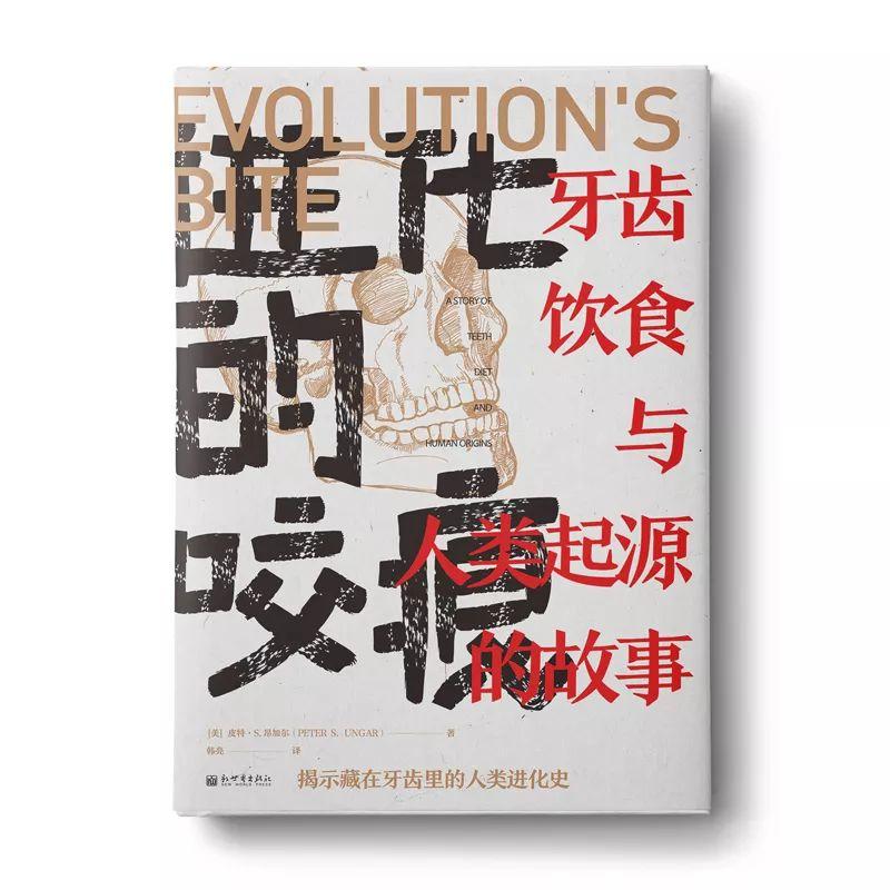 带你看尽世界文明的起源、发展与未来插图(5)
